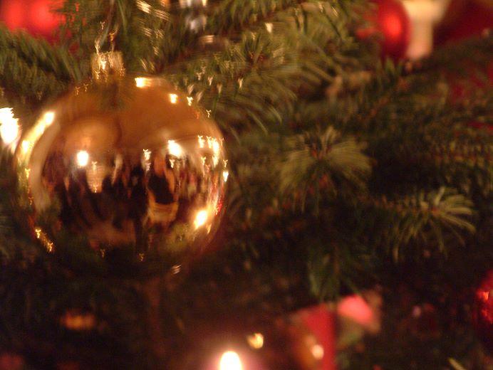 Weihnachtspackage - Woche